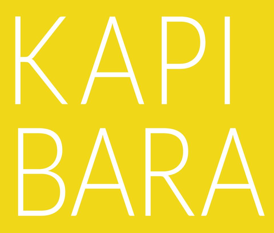 http://www.kapibara.com.pl/pl/