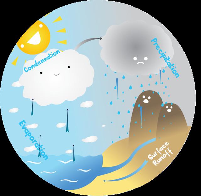 LA CIENCIA DE LA VIDA: Ciclo del agua [Material motivador]