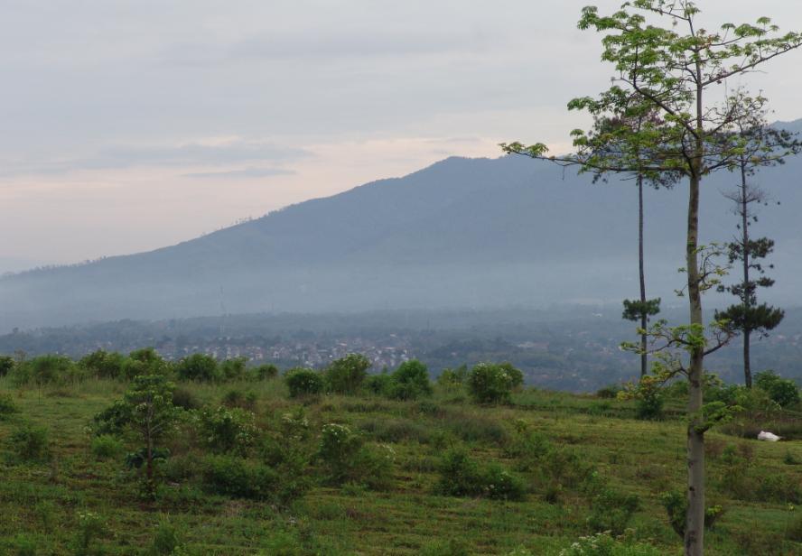SK Pokja Profil Desa Cilayung