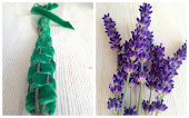 Lavendel Paraplyer