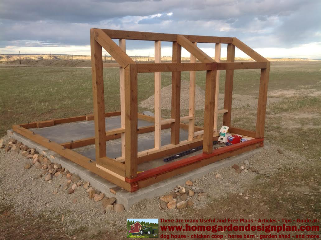 Bertia lanhe 5 x 6 chicken coop plans free for Dog kennel shed combo plans