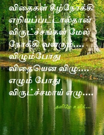 Labels: Tamil , Tamil Quotes