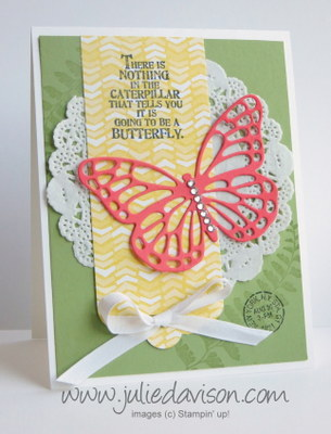 2015 Occasions Catalog Sneak Peek: Butterfly Basics + Butterfly Thinlits Card #stampinup www.juliedavison.com