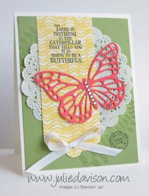 2015 Occasions Catalog Sneak Peek: Butterfly Basics + Butterfly Thinlits Card #stampinup www.juliedavison.com