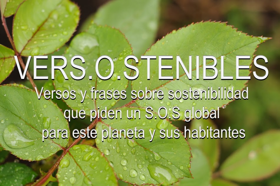 VERS.O.STENIBLES