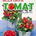 Budidaya Tomat di dalam Pot