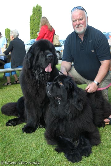 Brett Morris, Havelock North, with Newfoundland dogs L-R: Nonu and Kiana, at Yappie Hour at Trinity Hill Winery, Hastings, a F.A.W.C! Food and Wine Classic event. photograph