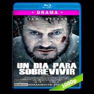 Un día para sobrevivir (2011) Full HD 1080p Audio Dual Latino-Ingles