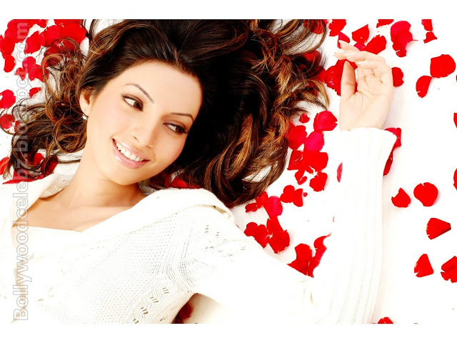 Shama Sikander Hot Pictures