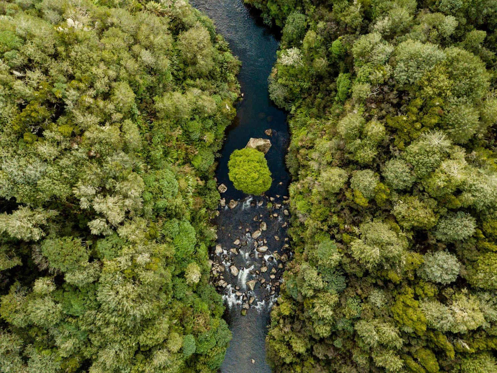 NZ: Lebender Fluss
