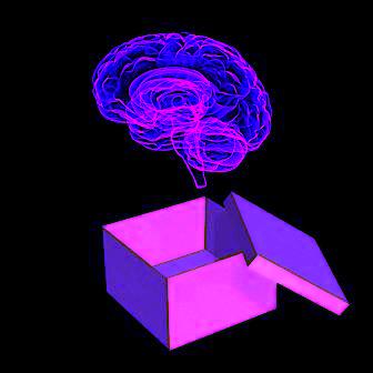 Brain In A Box4