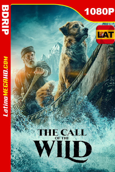 El llamado salvaje (2020) Latino HD BDRip 1080p - 2020