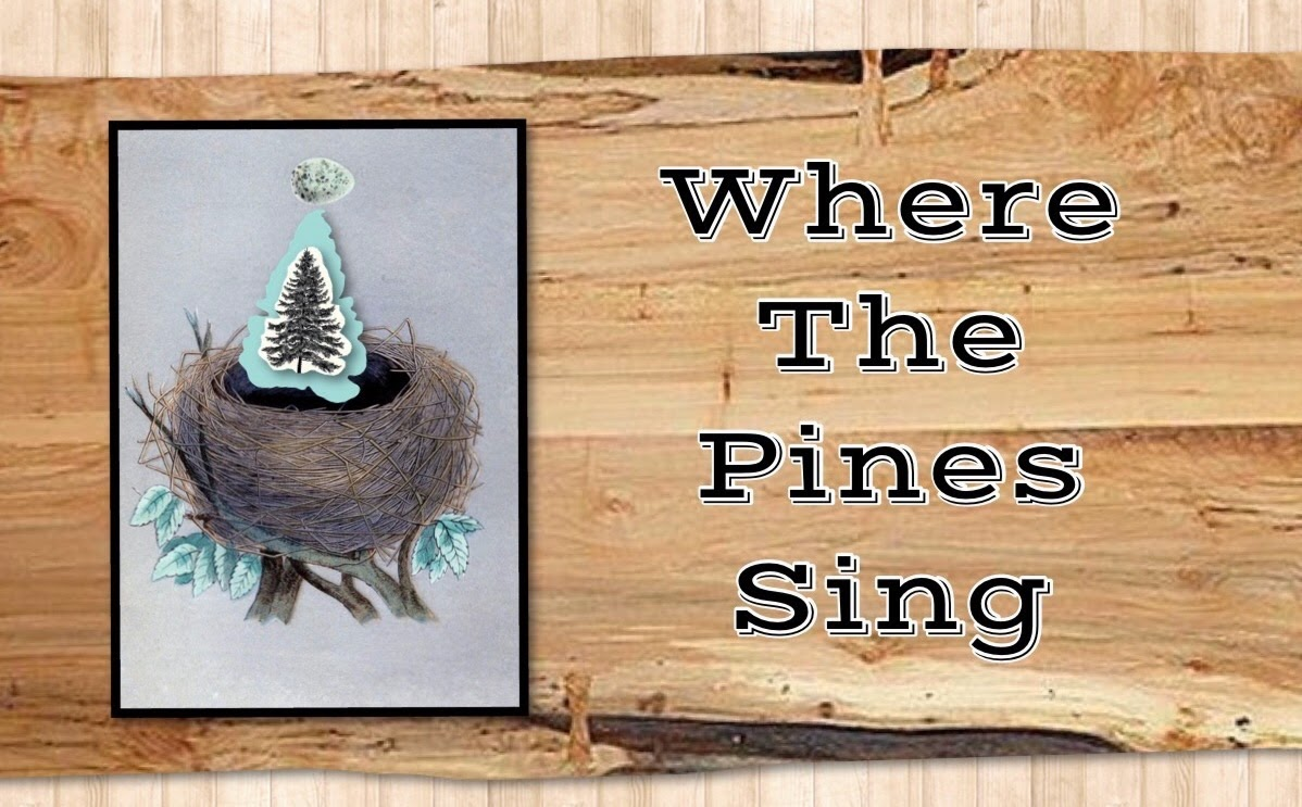Where The Pines Sing