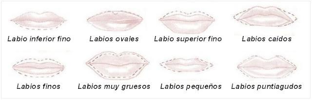 Tipos y formas de labios