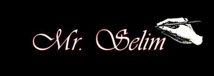 Mr.SeLim