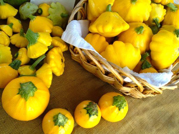NowThisLife.com - Elk Grove Farmer's Market - squash
