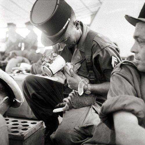 36 Amazing Historical Pictures. #9 Is Unbelievable - A French soldier feeding his kitten, Indochina, 1956.