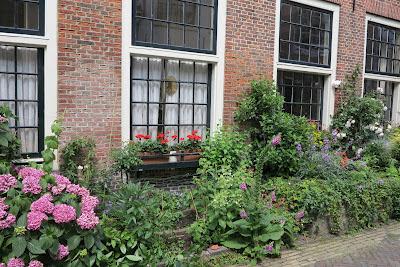 container garden, pink hydrangea, Haafner