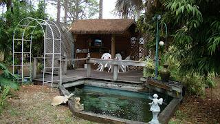 Clean simple koi ponds aquariums for Minimum depth for koi pond