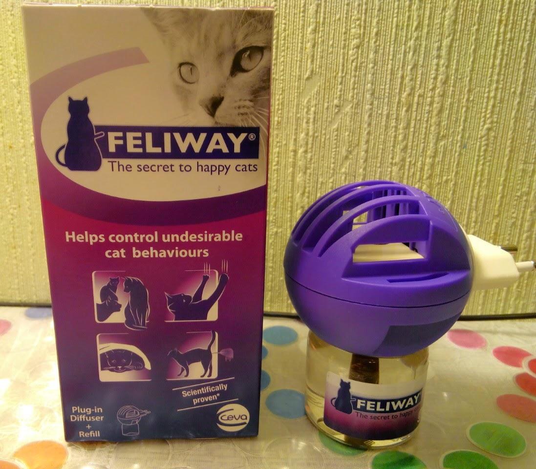 Успокоительное для кошек рекомендации