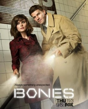 Download Bones 7ª Temporada