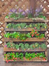 Semi-urban Gardener