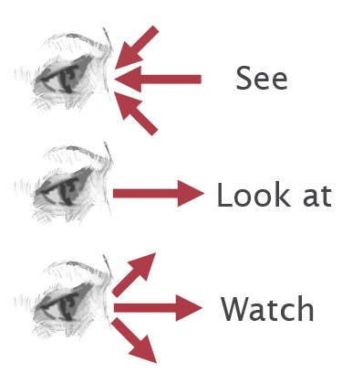 Difference Between Look And See | Difference Between