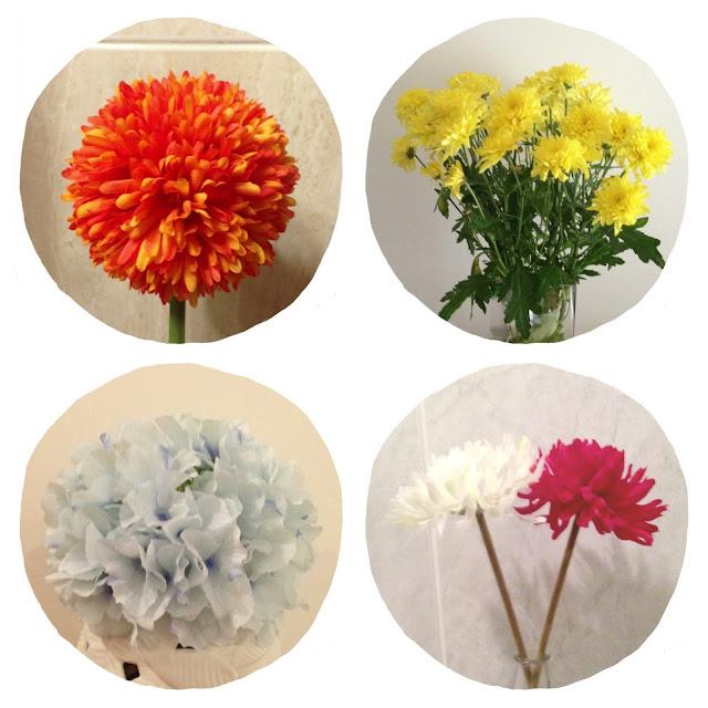 Flores // Flowers