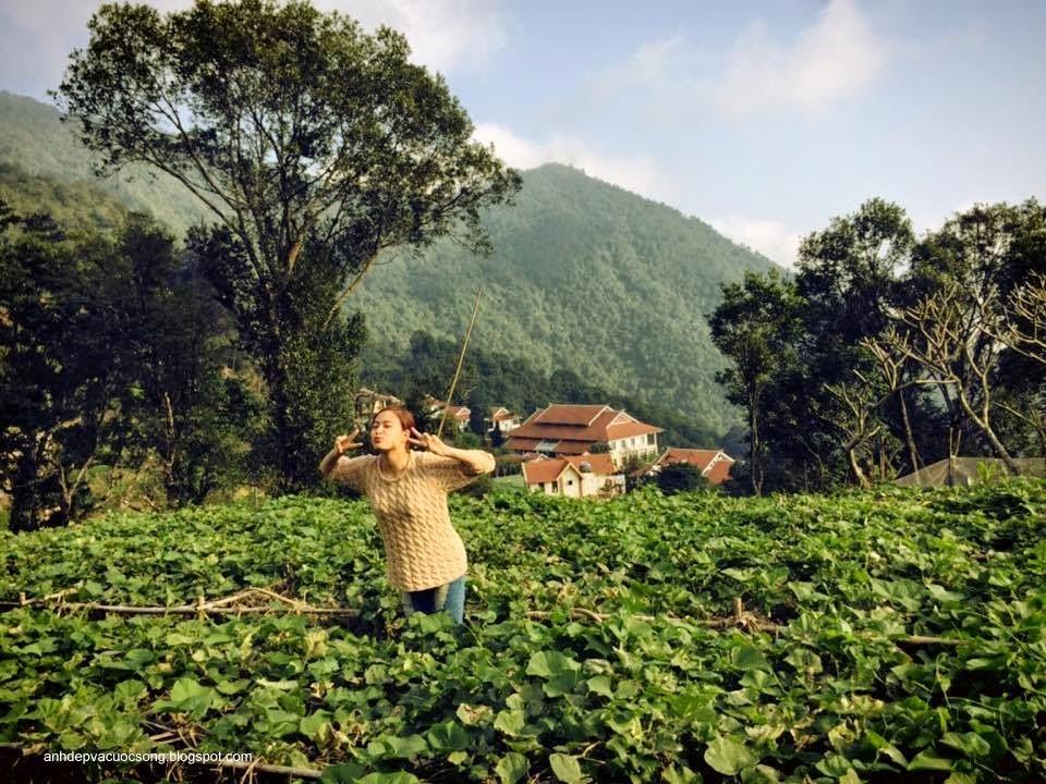 Ca sĩ Hoàng Thùy Linh nô đùa bên vườn rau 11