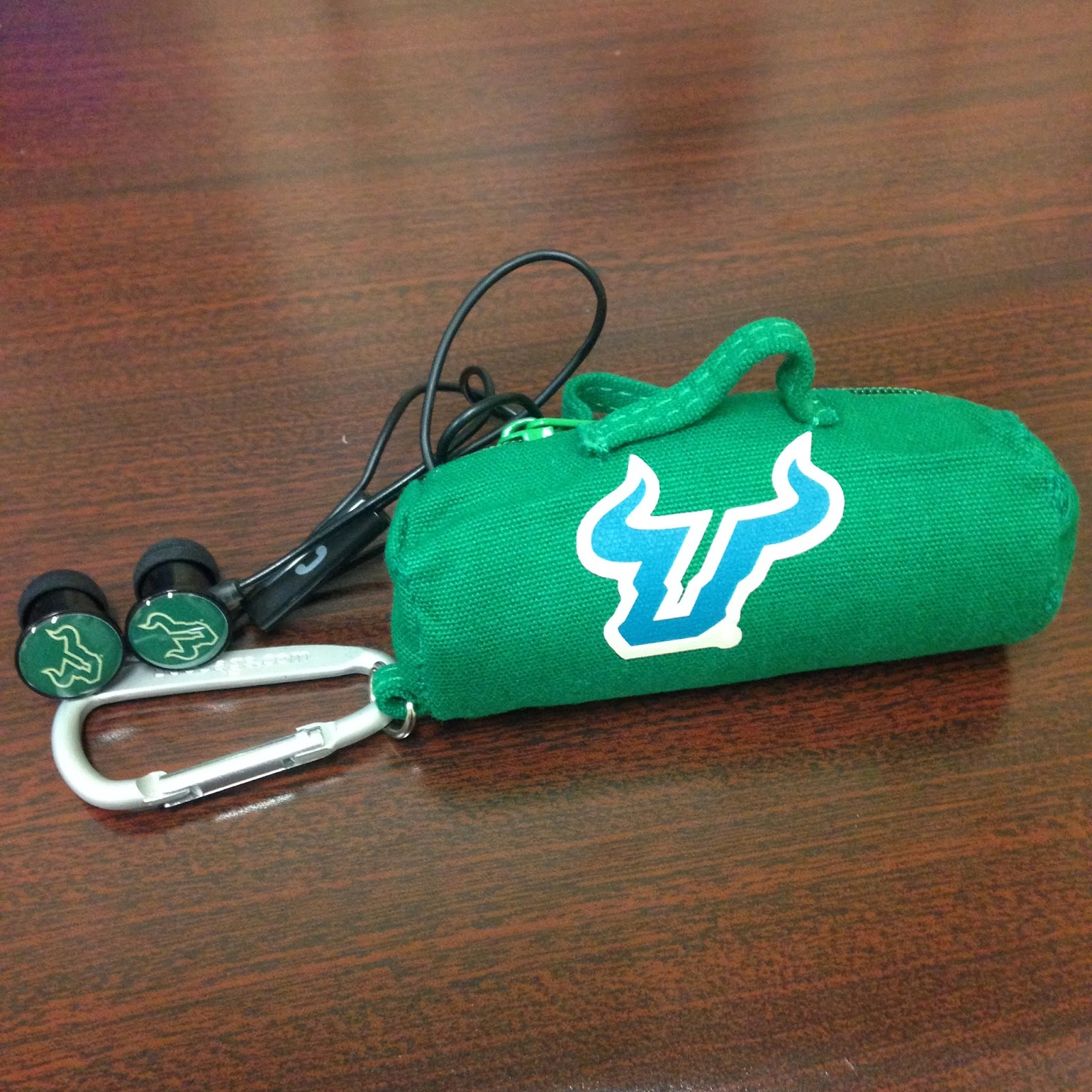 USF earbuds and budbag