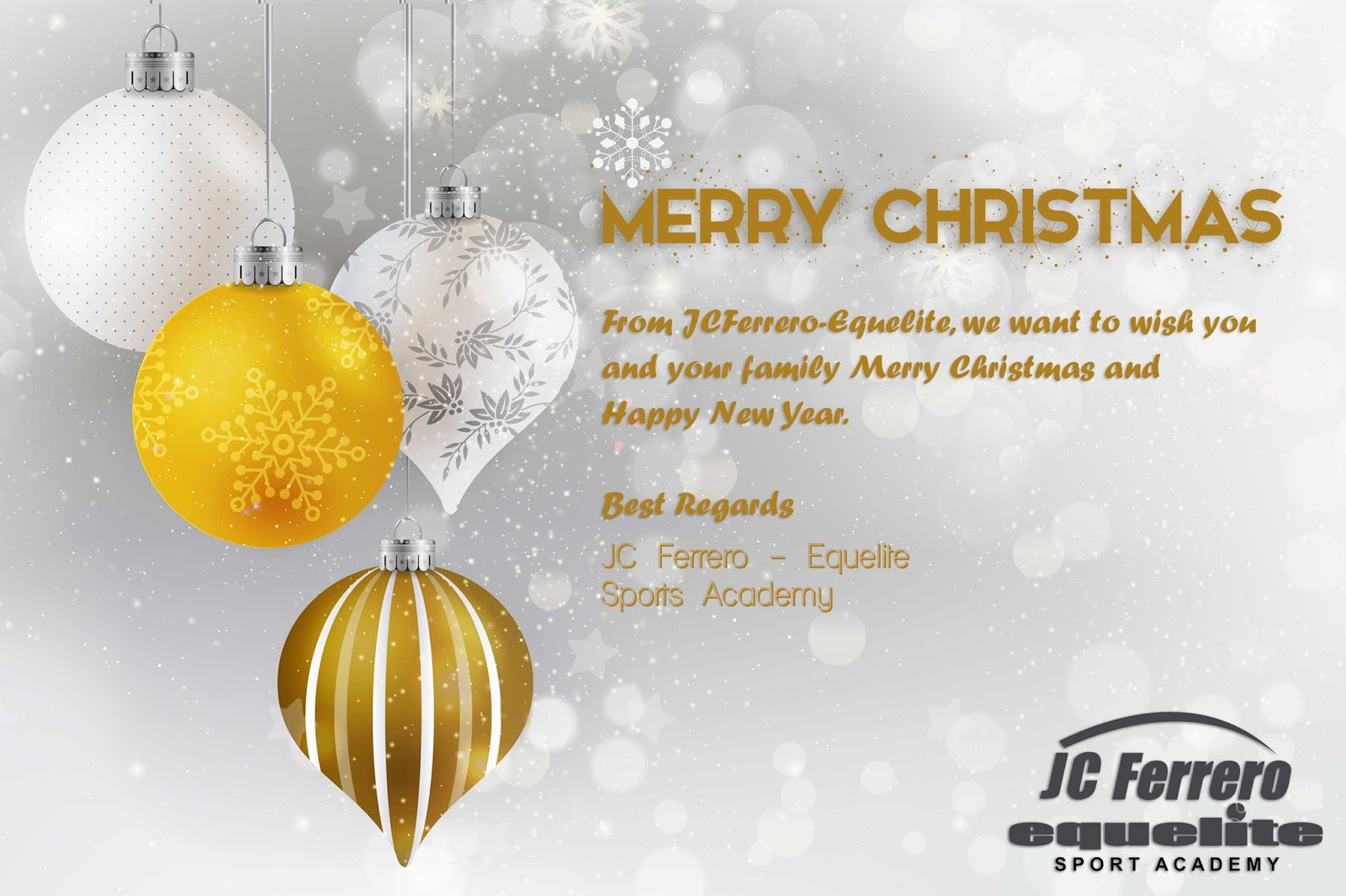 JC Ferrero-Equelite Tennis Academy Spain: Merry Christmas and happy ...