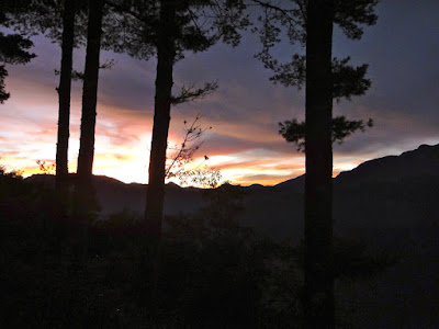 Alishan Before Sunrise View
