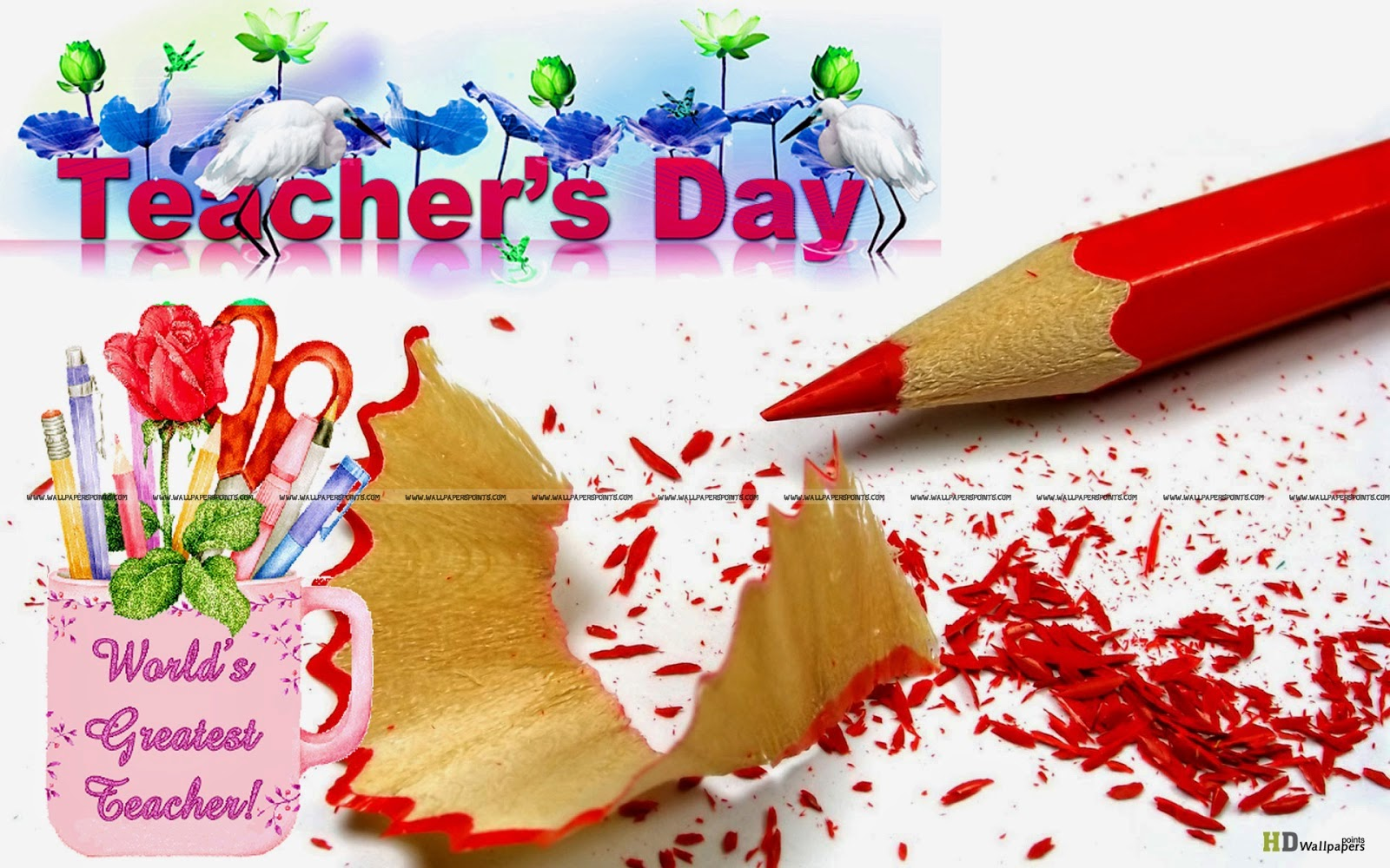essay of teachers day in english