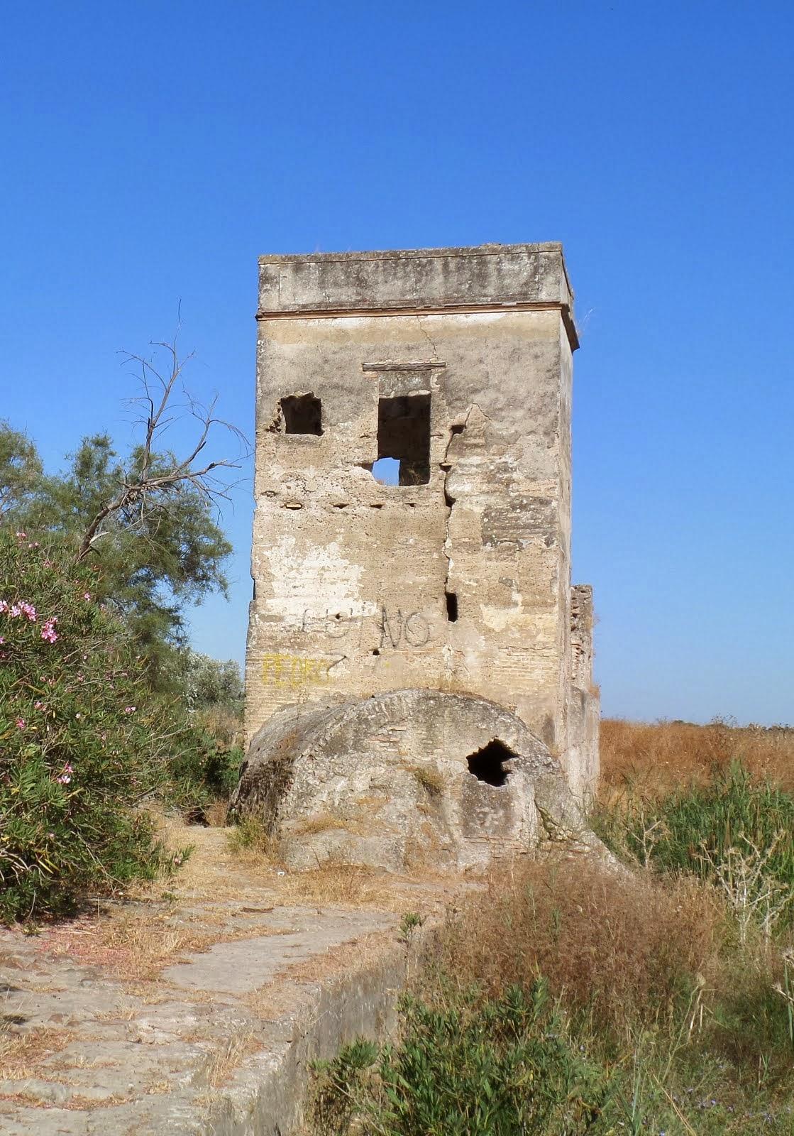 """FOTO DENUNCIA: Un molino """"descerrajado""""."""