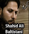 http://72jafry.blogspot.com/2014/03/shahid-ali-baltistani-nohay-2013-to-2015.html