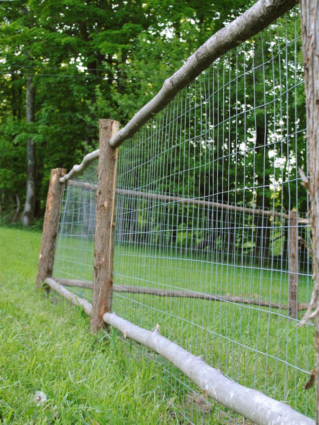 The little dog building a garden fence part