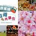 【芬園草屯一日遊】行程規畫,含9景點與9餐廳介紹