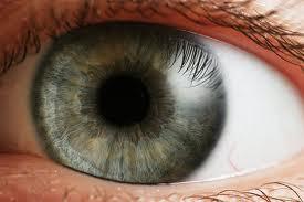 ¿Qué resolución tiene el ojo de una persona?, esa es una de las preguntas más curiosas que puedan surgir sobre el cuerpo humano.Los conos del ojo capturan cerca de 6 megapixeles de información en color, mientras que los bastones (células)consiguen 100 megapixeles en blanco y negro. La mayoría de los conos están agrupados alrededor de un punto central llamado fóvea y el ojo recorre su campo constantemente para componer una imagen. Sin embargo, luego de diversas teorías, el doctor Roger Clark, del Servicio Geológico de Estados Unidos, ha calculado que el ojo captura el equivalente a 576 megapixeles. El ojo