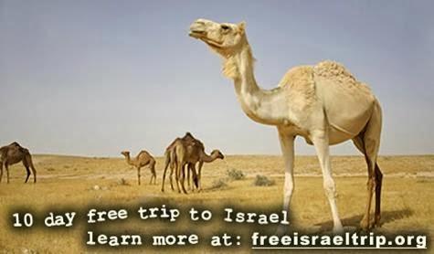 Taglit Birthright Israel: Hillel Experience