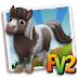 FV 2 Black Pinto Mini Horse (baby ,adult,prized)