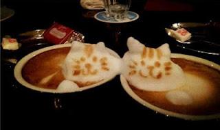 espuma cafe gatitos