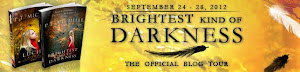 Brightest Kind of Darkness Tour