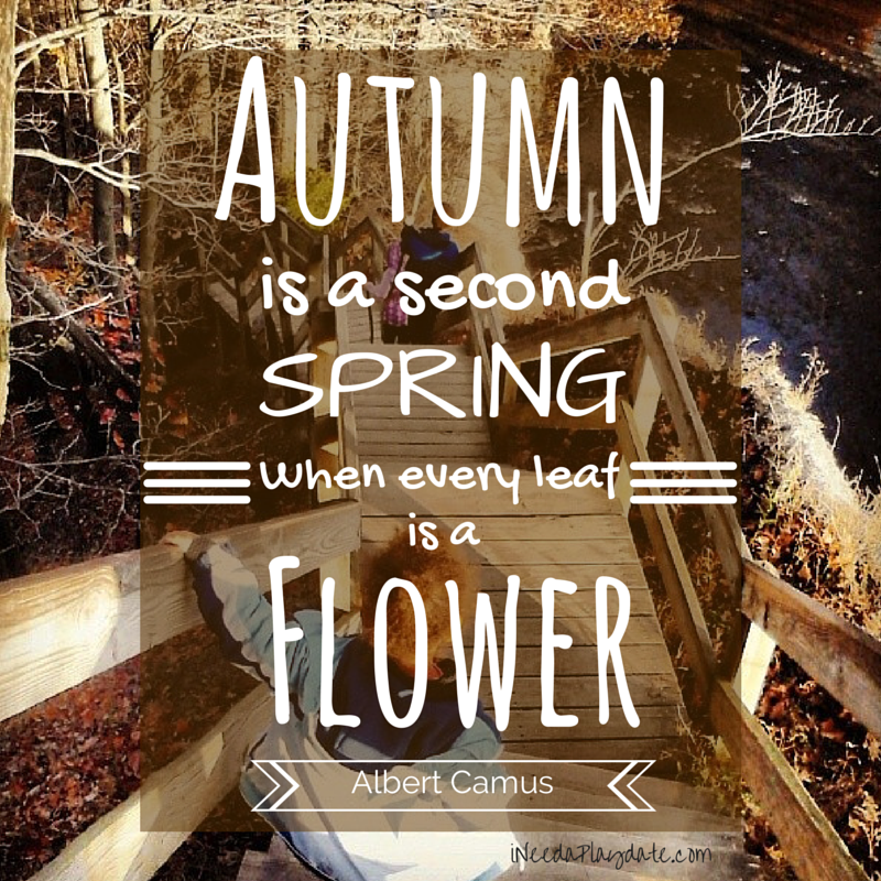 Thoughts on Autumn (plus some pics of Northeast Ohio)