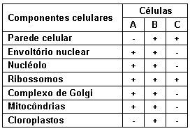 Saiba tudo sobre tipos celulares e membrana!