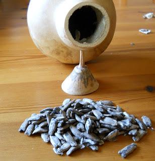 sacar semillas de la calabaza de peregrino