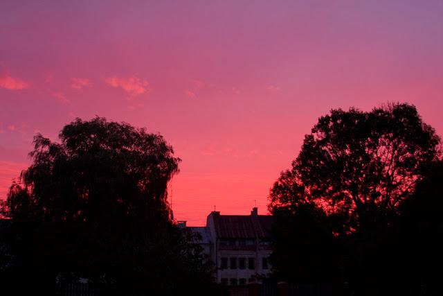 różowy wschód słońca