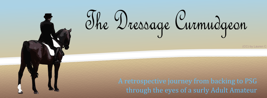 The Dressage Curmudgeon
