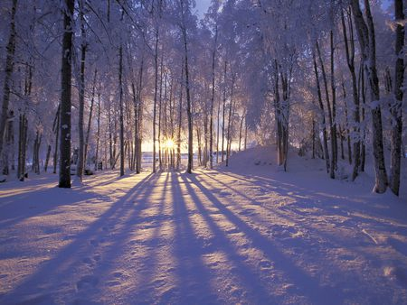 Winter Sunset Wallpapers Hd Wallpapers High Definition