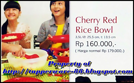 Tupperware-Cherry Red Rice Bowl