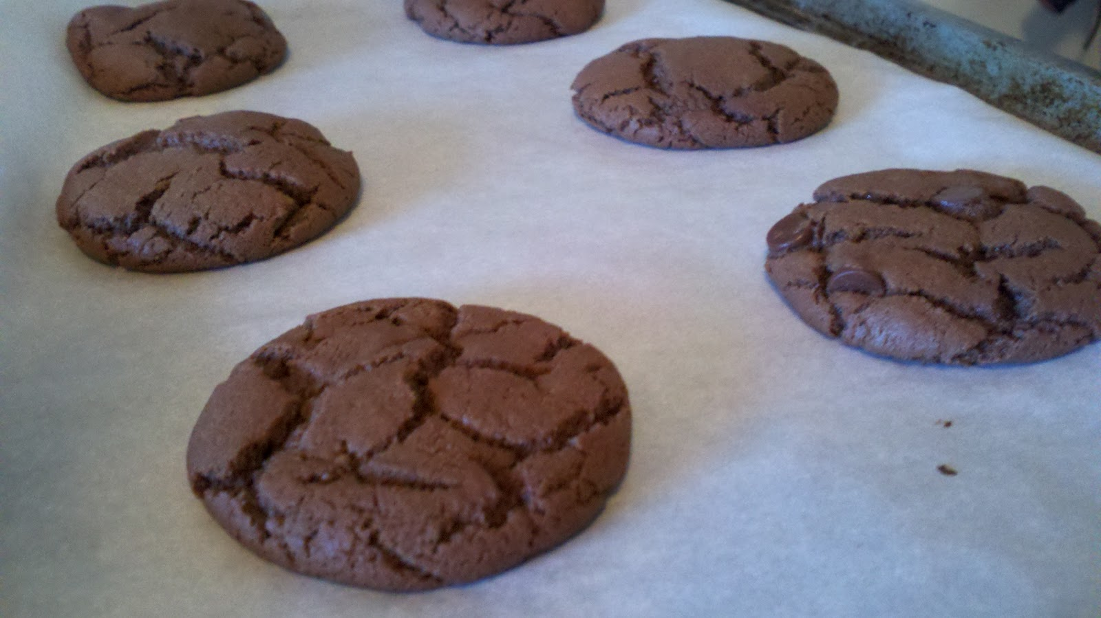 Chicken Soup for the Bowl: Double Chocolate Peanut Butter Cookies